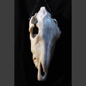 Eselsschädel Marmor Skulptur Steff Bauer 1