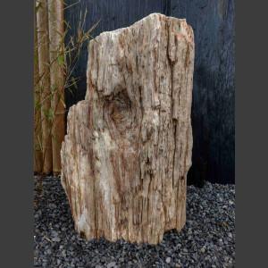 versteinertes Holz  geschliffen 69cm