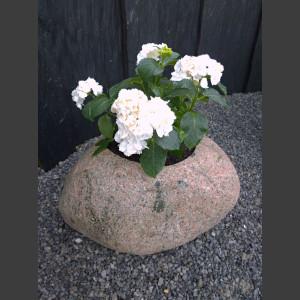 Blumenkübel Granit Findling Pflanzstein