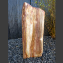 versteinertes Holz  poliert 62cm