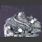 Diabas Quellstein Brunnen mit Schlange