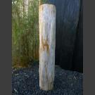 Versteinertes Holz 100cm