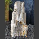 Versteinertes Holz  54cm