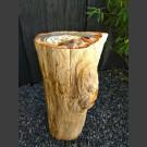 versteinertes Holz mit polierter Oberfläche 81,5kg