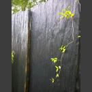 Plaques de schiste  noir 150cm